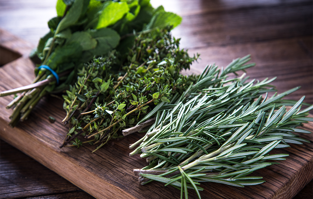 herbs_merc67